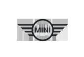 mini cabrio literatur